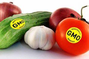 Знак ГМО в маркировке товаров станет крупнее